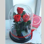 розы трио в колбе красные премиум