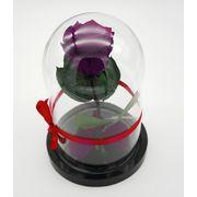 фиолетовая роза в колбе мини